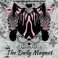 The daily Magnet with The Zebra Inc. Attracting Abundance for authors, speakers and entrepreneurs