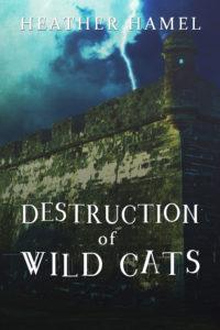 wild-cats-2-eb